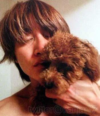 関ジャニ∞安田章大の飼っている犬の画像