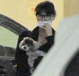 多部未華子が犬を抱えている写真