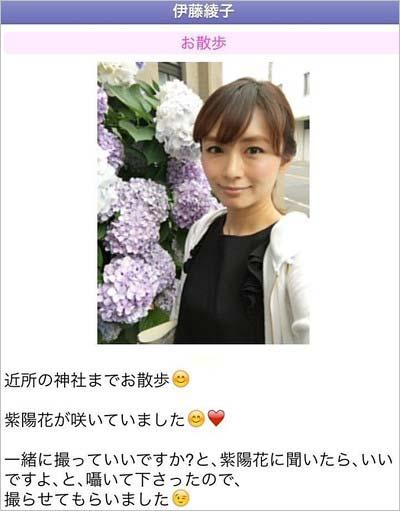 伊藤綾子がブログに投稿していたアジサイ記事