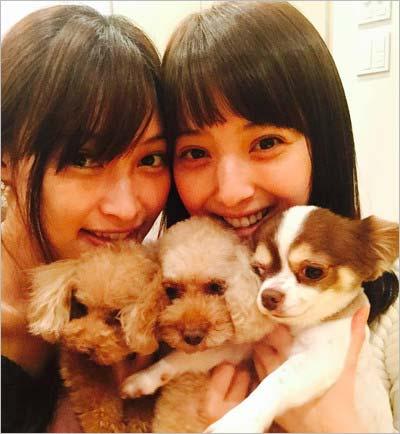 大政絢&佐々木希、3匹の愛犬の写真
