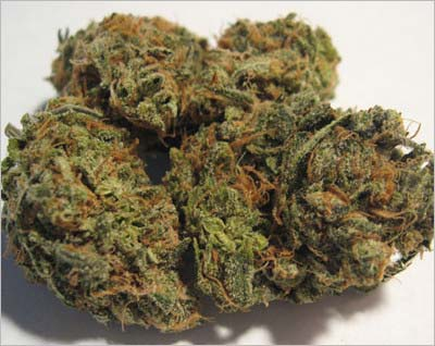 乾燥大麻の花穂部分(通称:バッズ)