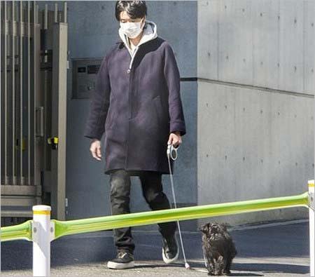 愛犬を散歩させる長谷川博己