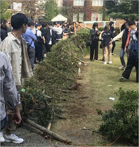 橋本環奈が出演イベント・立教大学の学園祭イベント、事故現場の植え込み