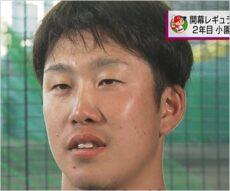 広島カープ小園海斗選手